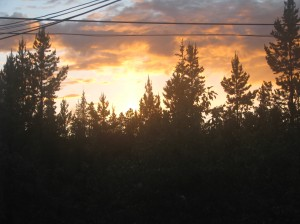 Summer sunset in the Yukon