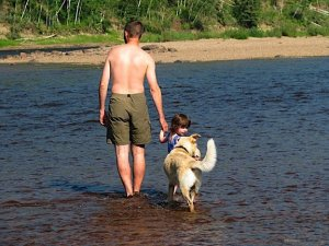 """Michael, Jade, and Nanuq wade over to the sandbar in the middle of the Petitot river.  A sunny holiday wouldn't be complete with time at the """"beach""""."""